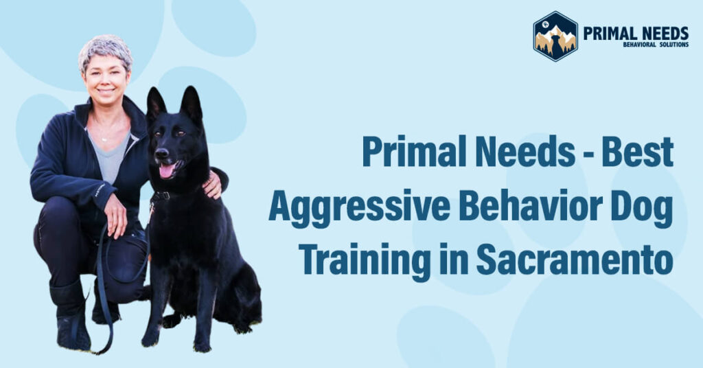 Primal Needs – Best Aggressive Behavior Dog Training in Sacramento