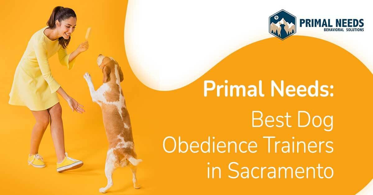 Primal Needs - Best Dog Obedience Trainers in Sacramento